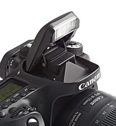The pop-up flash is also the AFassist light for the EOS 80D.