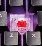 Under the keycaps you'll find Cherry MX switches.