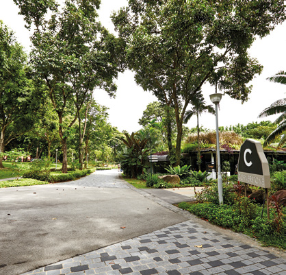 Homeowners can head to cafes in the neighbouring Bishan-Ang Mo Kio Park 2 on the weekends.