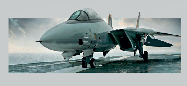 Although no longer in service, the F-14 is still admired by aviation enthusiasts.
