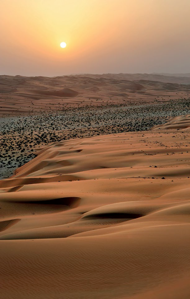 03 The largest continuous sand desert in the world: the Rub' al Khali.