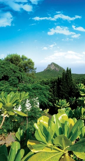The lush Kenting National Park surrounds Gloria Manor.