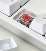 The rest of the keyboard uses TTC  Red switches.
