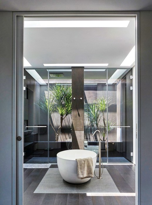 Green plants inject an organic touch and facilitate air  circulation