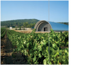 Grape varietals grown in the vineyards include syrah and vermentino, among others.