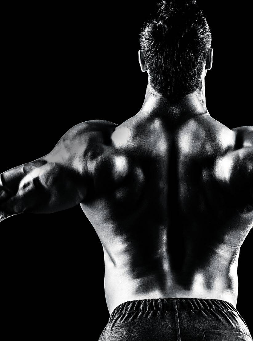 Pull Down, Pull-up, And Row Your Way To Building A Massive Back.