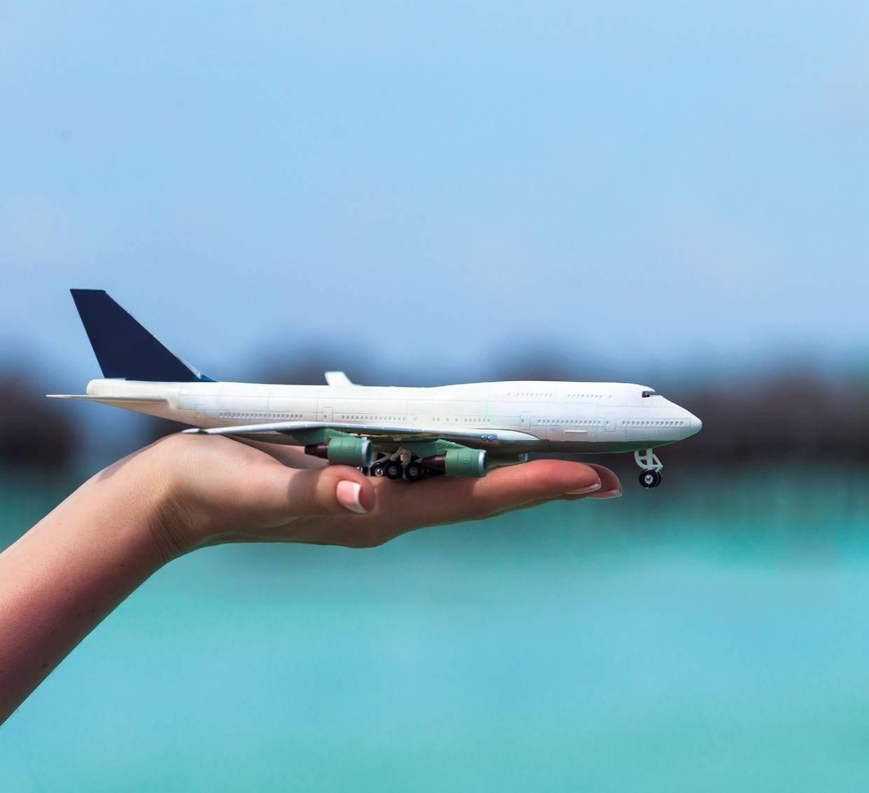 """We Wish You A Pleasant Flight"""